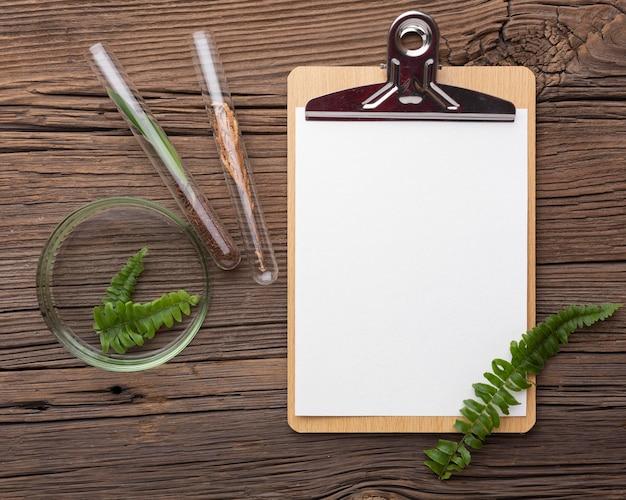 Bovenaanzicht laboratoriumglaswerk en planten