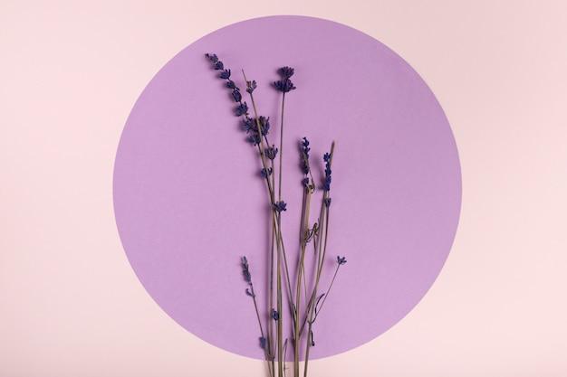 Bovenaanzicht lavendel op papier cirkel concept
