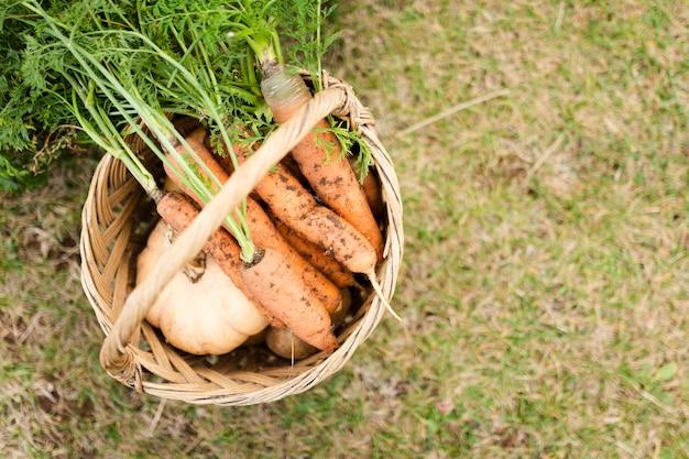 Bovenaanzicht mand met heerlijke tuin wortelen