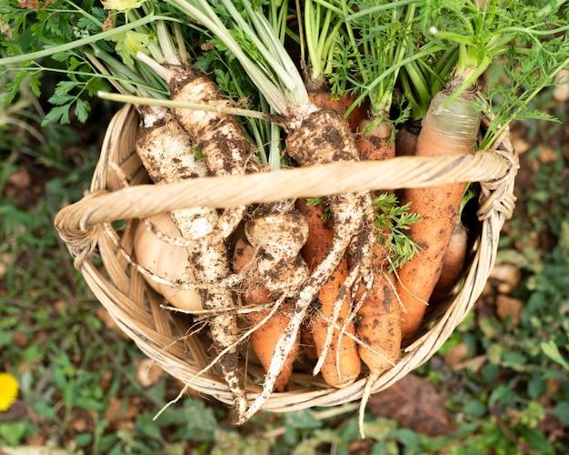 Bovenaanzicht mand met wortelen en pastinaak