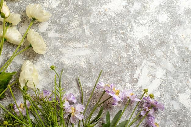 Bovenaanzicht mooie bloemen op witte oppervlakte bloementuin schoonheid