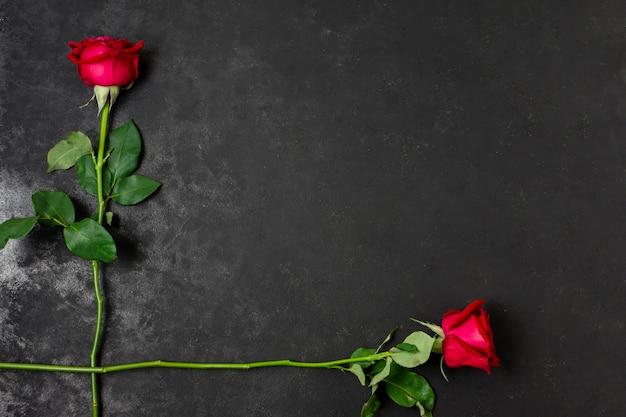 Bovenaanzicht mooie rode rozen met kopie ruimte