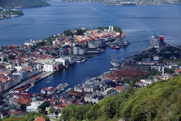Bovenaanzicht op bergen met rode daken en fjord