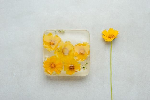 Bovenaanzicht op bevroren bloemen in het ijsblokje