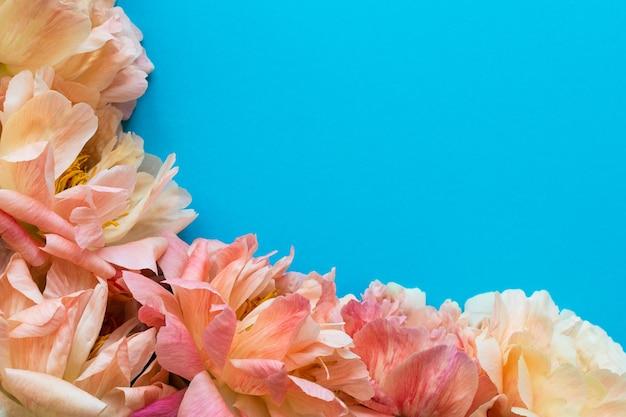 Bovenaanzicht op boeket van pioenrozen, bloemen op blauwe achtergrond