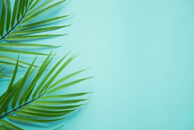 Bovenaanzicht op kokosnoot tropische bladeren op groenblauw kleur achtergrond