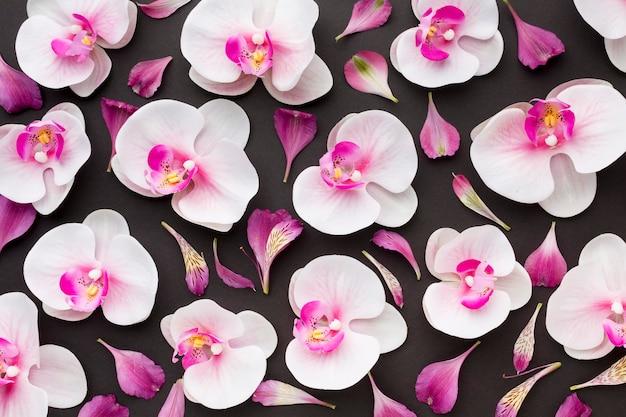 Bovenaanzicht orchideeën arrangement