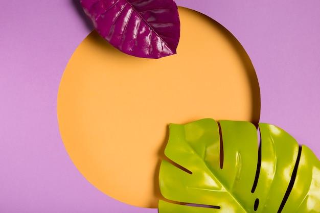 Bovenaanzicht papier cirkel met bladeren