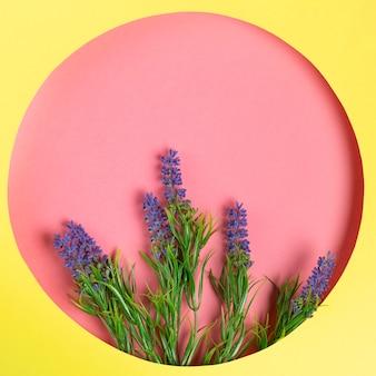 Bovenaanzicht papieren cirkel met lavendel