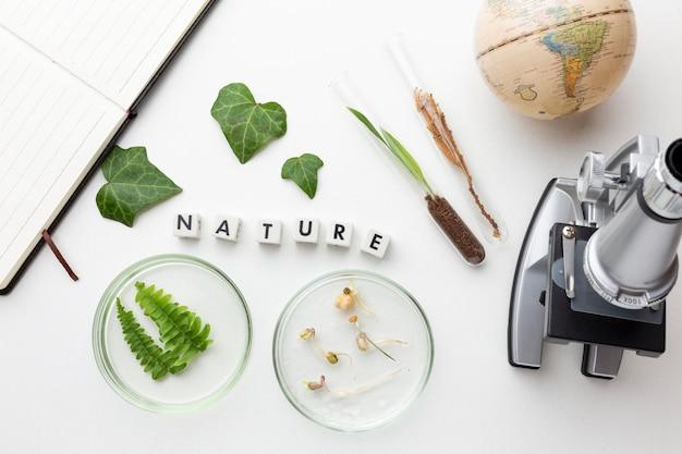 Bovenaanzicht planten en glaswerk