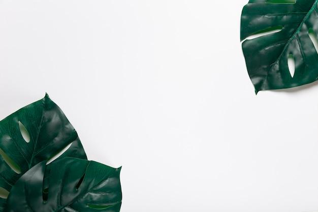 Bovenaanzicht realistische bladeren in hoeken