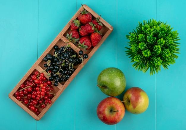 Bovenaanzicht rode en zwarte bessen met aardbeien en appels op een blauwe achtergrond