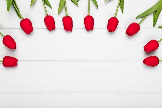 Bovenaanzicht rode tulpen uitgelijnd in halve cirkel