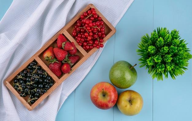 Bovenaanzicht rood met zwarte bes met aardbeien en appels op een lichtblauwe achtergrond