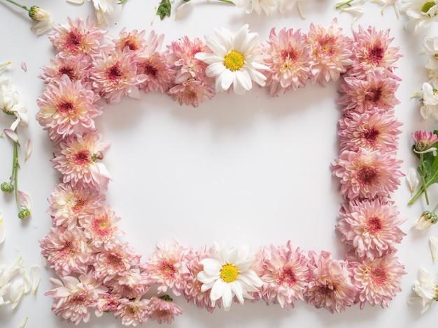 Bovenaanzicht, roze en witte bloemen, genaamd chrysanthemum, geplaatst rond het frame
