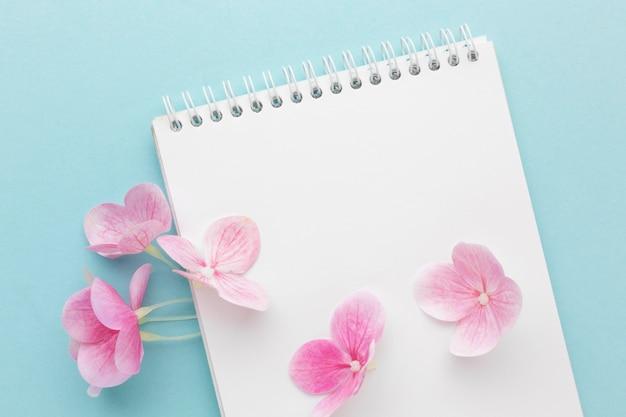 Bovenaanzicht roze hortensia op lege notebook