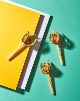 Bovenaanzicht samenstelling met gele physalis plant en plastic rietjes voor sap op veelkleurige witte geelgroene papieren achtergrond met zachte schaduwen. moderne stijl.
