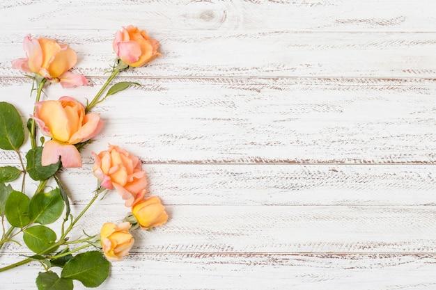 Bovenaanzicht stelletje oranje rozen met kopie ruimte