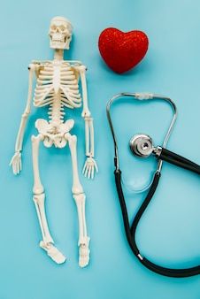 Bovenaanzicht stethoscoop met skelet en hart