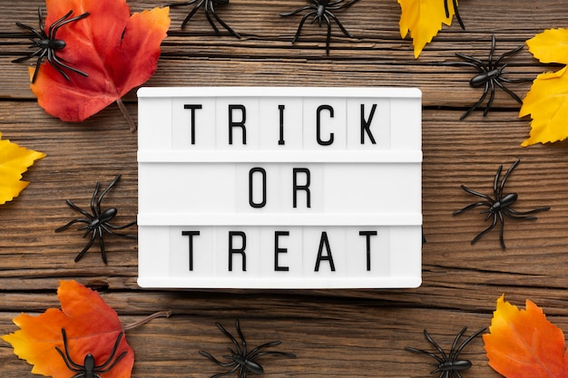 Bovenaanzicht trick or treat concept met herfstbladeren