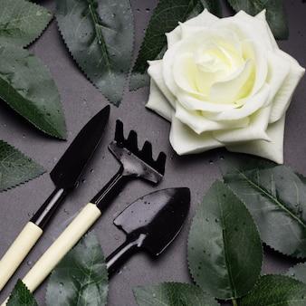 Bovenaanzicht tuingereedschap, whiterose, groene rozenblaadjes