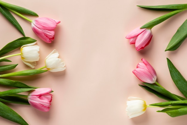 Bovenaanzicht tulpencollectie