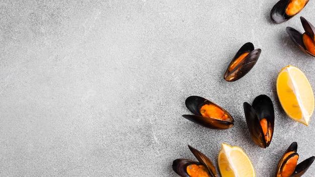 Bovenaanzicht tweekleppige schelpdieren met exemplaar-ruimte