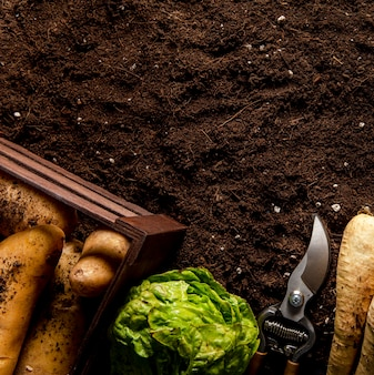 Bovenaanzicht van aardappelen met salade en kopie ruimte