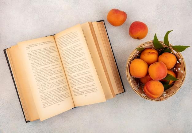 Bovenaanzicht van abrikozen in mand en open boek op witte achtergrond