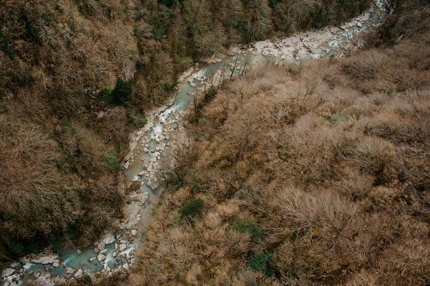 Bovenaanzicht van azuurblauwe bos rivier stroomt tussen rotsen en gele bomen in martvili canyon