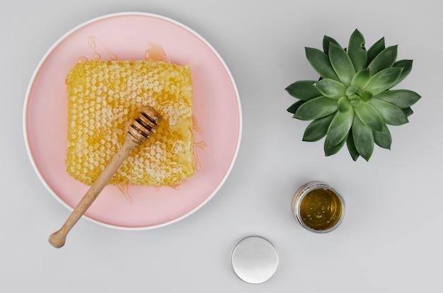 Bovenaanzicht van beer op honingraat