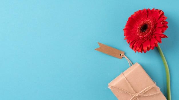Bovenaanzicht van bloem met cadeau en tag