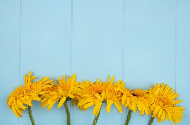Bovenaanzicht van bloemen op blauw met kopie ruimte
