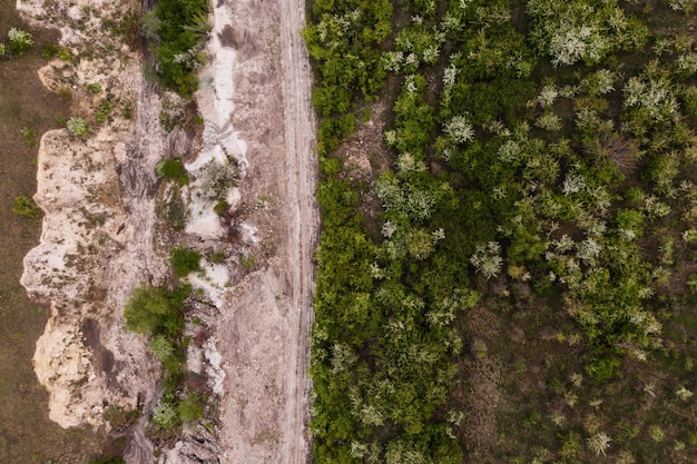 Bovenaanzicht van bomen en rotstextuur