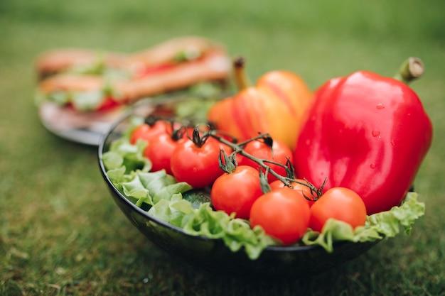 Bovenaanzicht van bord met zelfgemaakte smakelijke sandwiches gemaakt van huisbrood en verse groenten. kom met gezonde eco-groenten op het gras.