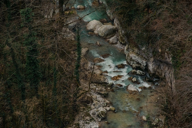 Bovenaanzicht van bos rivier stroomt onder rotsen in martvili canyon