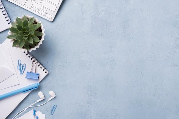 Bovenaanzicht van bureau met vetplant en notebooks