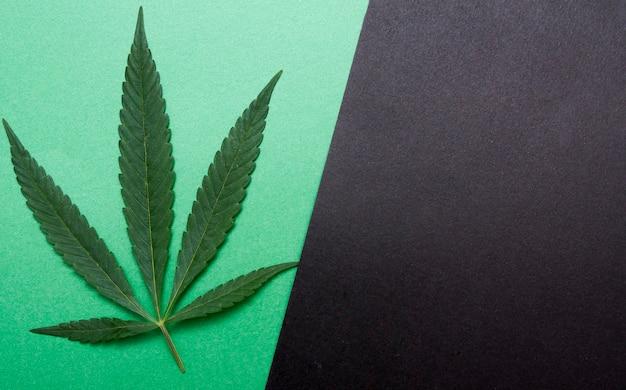 Bovenaanzicht van cannabis op papier
