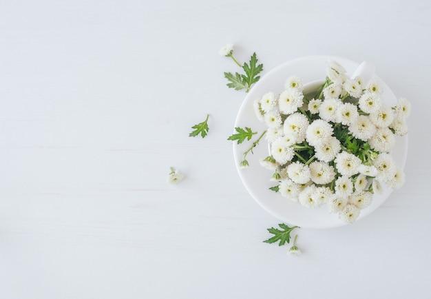 Bovenaanzicht van chrysanten bloemen op witte ondergrond
