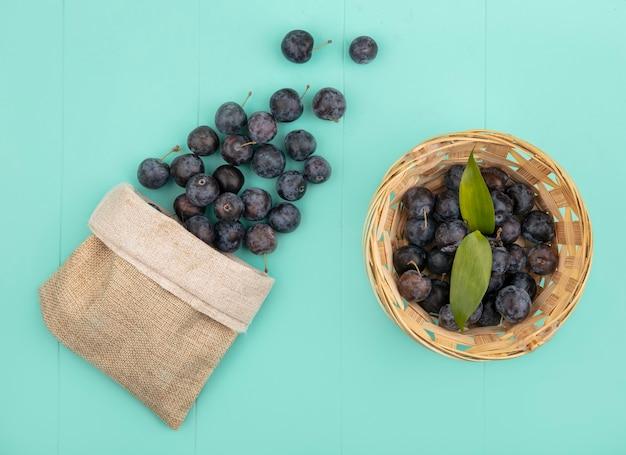 Bovenaanzicht van de kleine donkere bolvormige samentrekkende fruit sleepruimen op een emmer met sleepruimen die uit een jutezak vallen op een blauwe achtergrond