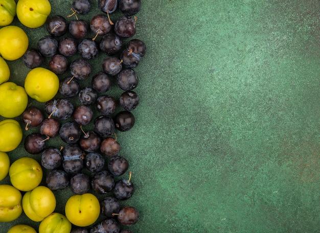 Bovenaanzicht van de kleine zure blauwzwarte fruitslaes met verse groene kersenpruimen op een groene achtergrond met kopie ruimte