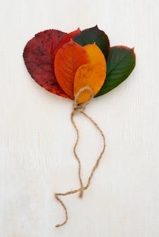 Bovenaanzicht van de selectie van bladeren vastgebonden met een touwtje