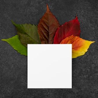 Bovenaanzicht van de selectie van herfstbladeren met papier