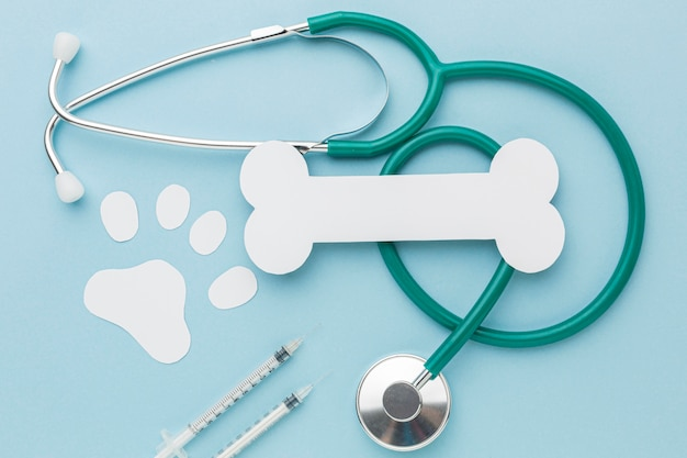 Bovenaanzicht van de stethoscoop met papierbeen en pootafdruk voor dierendag