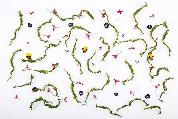 Bovenaanzicht van een bloemsamenstelling op een witte achtergrond