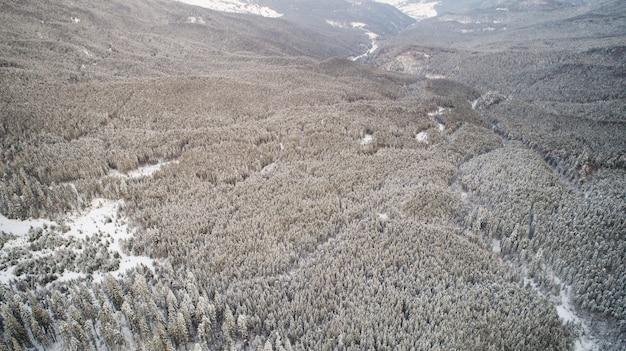 Bovenaanzicht van een fantastisch dicht besneeuwd sparrenbos gelegen op een hoogland in een ruig noordelijk land