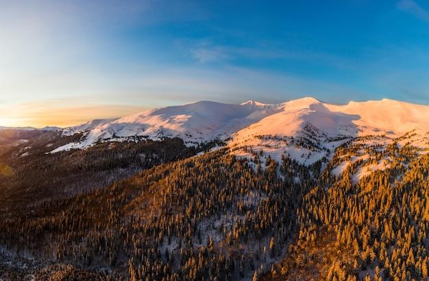 Bovenaanzicht van een magisch uitzicht op een winter bergbos met dikke dennenbomen en heuvels in een prachtige roze winterzonsondergang. noords schoonheidsconcept. copyspace