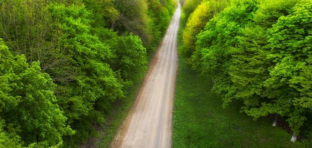 Bovenaanzicht van een onverharde bosweg.