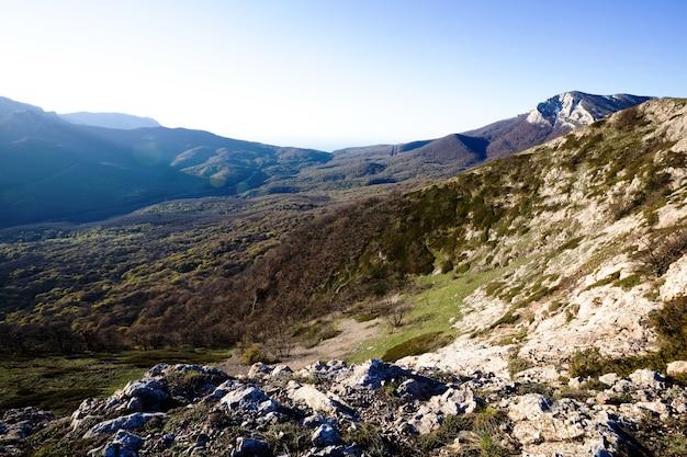 Bovenaanzicht van een pittoreske heuvel bedekt met gras en zonder en bladverliezende struiken zonnige herfstochtend. concept van trekking door natuurreservaten en bergen