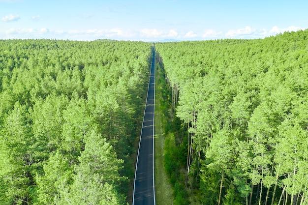 Bovenaanzicht van een rechte weg in het bos met hoge pijnbomen